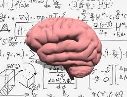 мозг и математика