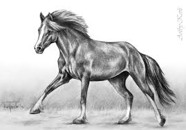 running horse drawing.  Drawing Running Horse  By Abkkkk To Horse Drawing G