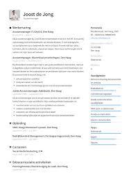 Cv For Account Manager 12x Accountmanager Cv Voorbeeld Makkelijk Een Sterk Cv Maken