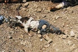 should christians fight war destruction kill