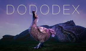 commands admin commands dododex
