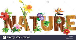 Word Of Nature Font Design For Word Nature With Different Types Of Flowers Stock