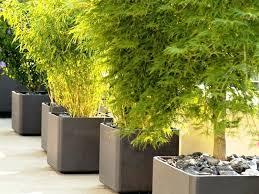 big outdoor plant pots modern large flower pots for outdoors large outside plant pots