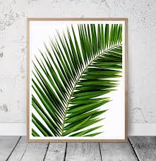 large palm leaf wall art