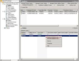 Suspending and Resuming Database Copies