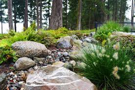 Small Picture Camano Island Modern Natural Rain Garden with River Rock and