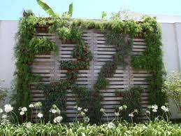 Hoher Sichtschutz Im Garten Siddhimind Info