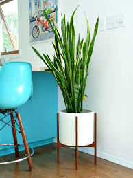 Modernica Case Study Small Cylinder Planter Shop Horne