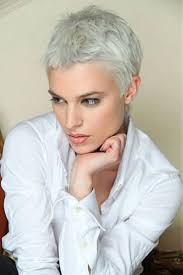 Woman Short Hair Style 215 best short short hair images hairstyles hair 8295 by wearticles.com