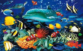 Océano Olas del mar Animales bajo el agua Delfines Exóticos coloridos peces  Sip Coral Corales Paisaje subacuático Paradise Art Paintings Animales  marinos 1920 × 1200, Fondo de pantalla HD | Wallpaperbetter