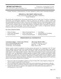 Homeland Security Guard Resume Example Templates Chief Information