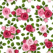 vector seamless pattern with red and pink roses on white wall decal textures