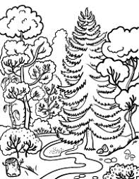 Forest Coloring Page Prv Coloring Pages Free Coloring Pages