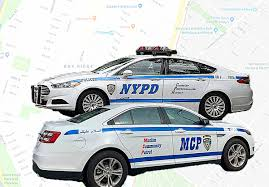Image result for sharia patrol ny