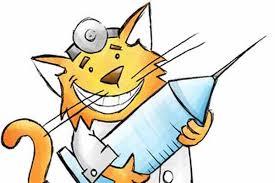 Vacinação dos Gatos