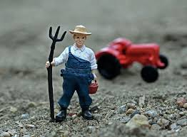 Image result for agriculture worker