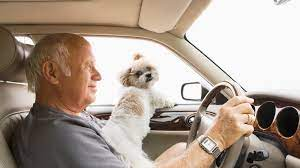 Avoid allowing your car insurance policy to lapse. The Penalties For Driving Without Insurance In Texas