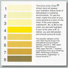 Urine Hydration Chart Australia Hydration Check About Us