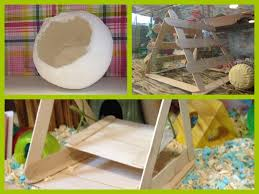 Home made hamster toys