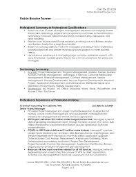 Summary Sample For Resume Resume Examples Of Summaries On Resumes