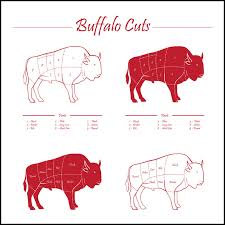 Wild Game Meat Cutting Chart Bison Cooking Tips