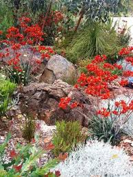 Small Picture 117 best Garden images on Pinterest Landscaping Gardening and