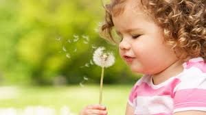 Nice cute babies Baby Boy Cute Es Wallpapers For Facebook Profile 5 Baby Pictures For Wallpapers Group 61 Flowers Healthy Cute Baby With Flowers Hd Wallpaper Flowers Healthy