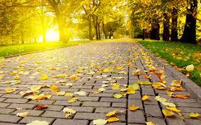 fall nature backgrounds. Autumn HD Wallpaper. Fall Nature Backgrounds 2