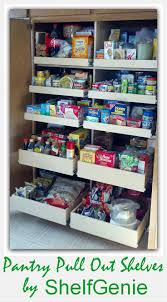 Roll Out Pantry Cabinet 25 Best Ideas About Roll Out Shelves On Pinterest Slide Out