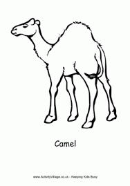 Small Picture Camel Colouring Pages