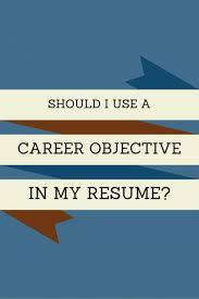 Best 20 Resume Career Objective Ideas On Pinterest Career