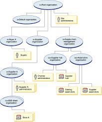 Supply Chain Organization Structure