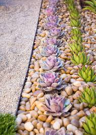Small Picture 8 Elements To Include When Designing Your Zen Garden Succulents