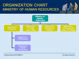 Human Resource Department Organizational Chart Aam 2053 Human Resource Management Ppt Download