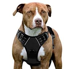 2 Hounds Harness Size Chart Eagloo Dog Harness No Pull Walking Pet Harness With 2 Metal Rings And Handle Adjustable Reflective Breathable Oxford Soft Vest Easy Control Front