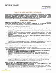 Sample Resume With Objectives Inspiration Resume Objectives For Government Jobs Unique Sample Resume For