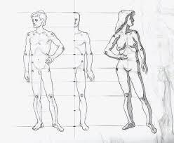 Beispiele einen akt, eine karikatur zeichnen einen entwurf am computer zeichnen (in der art einer zeichnung auf dem bildschirm erzeugen) unter aktzeichnen versteht man die bildnerische. Aktzeichnen Ab 16 Marz 2020 Sbkg Schule Fur Bildende Kunst Und Gestaltung
