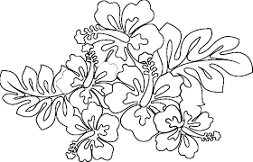 Hawaiian Flower Coloring Pages Printable At Free