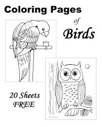 Small Picture Bird coloring sheets and pictures