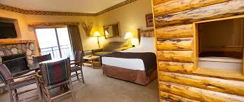 kid cabin suite at the great wolf lodge socal in garden grove