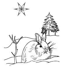 Small Picture Moose Winter Animal Coloring Pages Animal Coloring Pages Moose