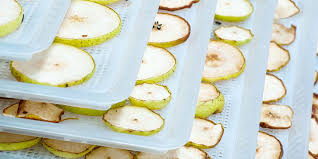 A Beginner's Guide to <b>Dehydrating Food</b>: Tips & Tricks