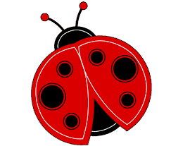 bug clipart png. red bug clipart png