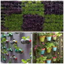 Small Picture Vertical gardens in your home here is how you can DIY Latest