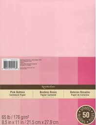 Amazon Com Recollections Cardstock Paper 8 1 2 X 11 Pink Buttons