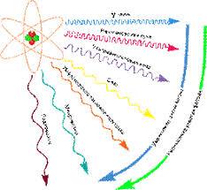 Реферат Влияние физических факторов на микроорганизмы  Ионизирующее излучение действует на клетки тем сильнее чем они моложе и чем менее дифференцированны На основании морфологических признаков поражаемое
