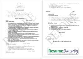 Small Business Owner Resume Examples