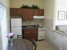 Small Apartment Kitchen Design Ideas Best Apartment Dining Room