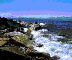 Реферат Охрана и использование водных ресурсов ru cуществующие Правила охраны водоемов от загрязнения сточными водами предлагают производить оценку качества воды по величинам ПДК в расчетном створе