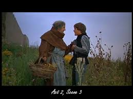 best friar lawrence images romeo and juliet a romeo asks friar lawrence to marry them the friar is skeptical but agrees to wed them in hopes of bringing peace to the two families
